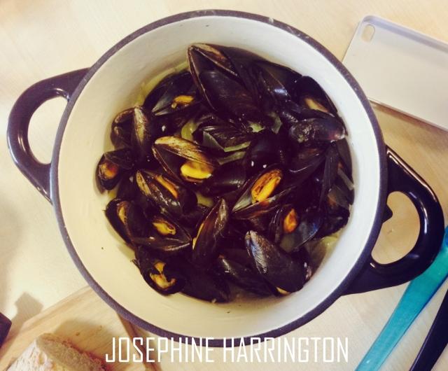 Mussels in a White Wine Sauce | josephine harrington